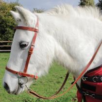 bridon-bipo-poney--p-image-41832-grande