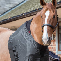 EQUIPHORSE_PROTECTION-POITRAIL_850F00