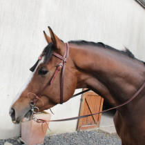 EQUIPHORSE_BRIDON WESTERN RAW HIDE_1