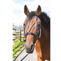 EQUIPHORSE_FRONTAL ANTIMOUCHE_1